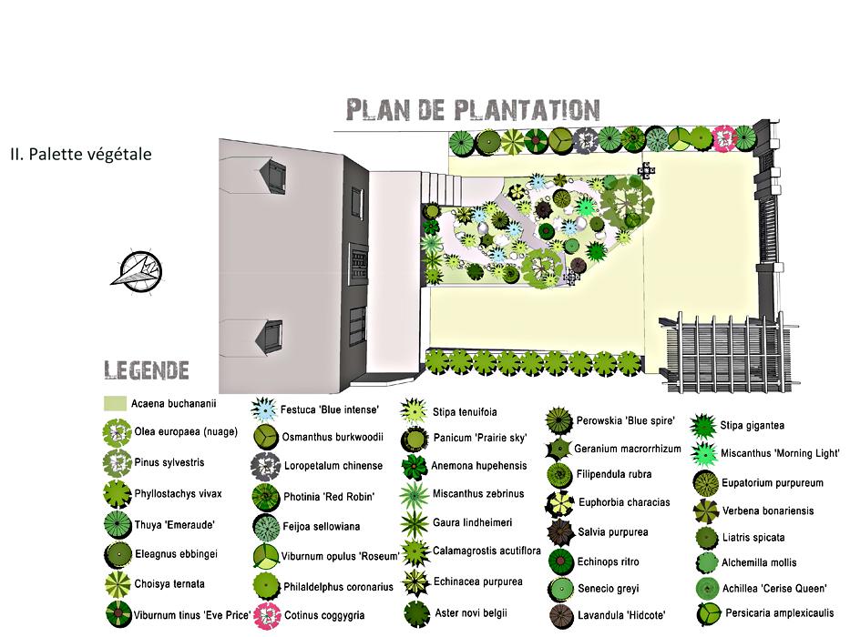 MASTER_Plan-Plantation